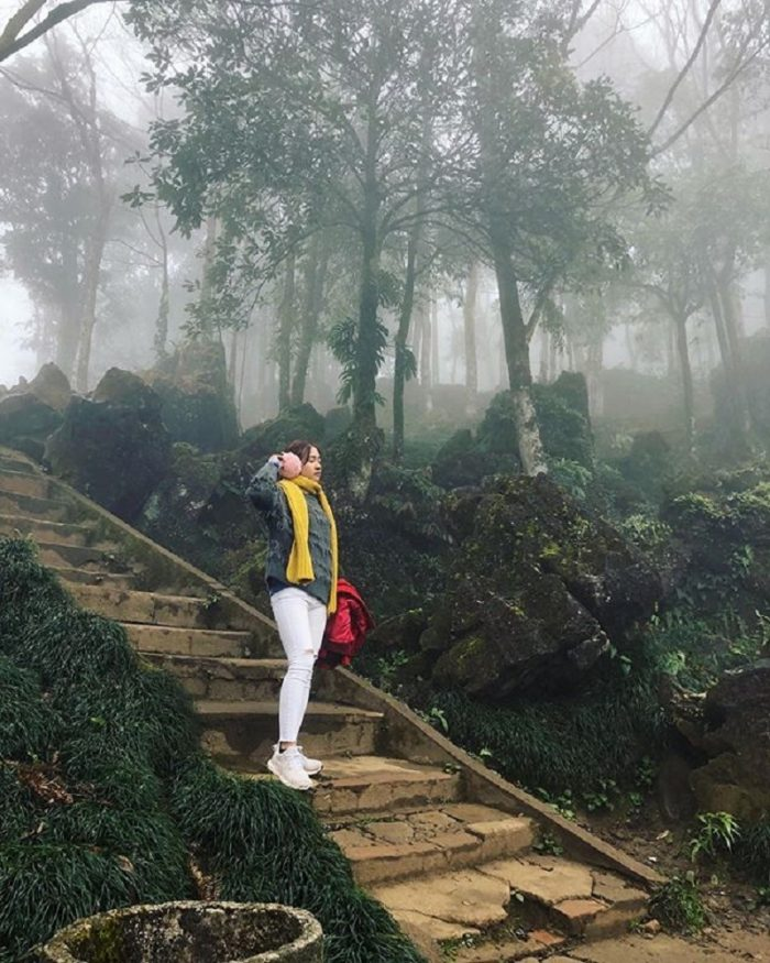 đường lên núi hàm rồng Sapa