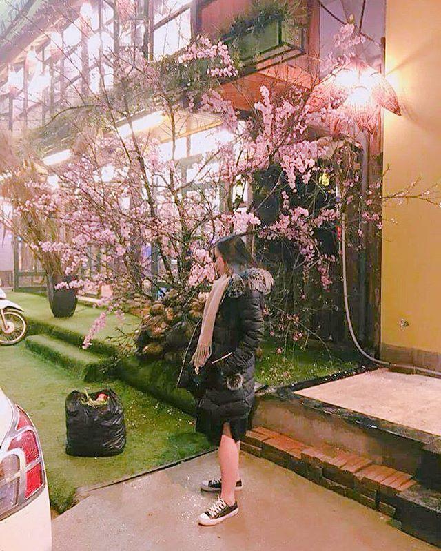 nhà hàng hoa đào sapa